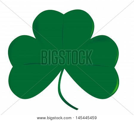 A very lucky green Irish shamrock over white