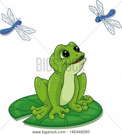 Frog and dragonfly on white background< EPS 8