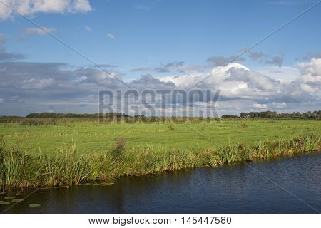 Typical green and wet polder landscape in The Netherlands