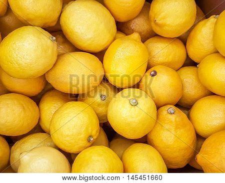 Background of yellow lemons. background fresh fruit