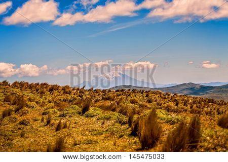 National Park Cotopaxi Landscape Ecuador South America