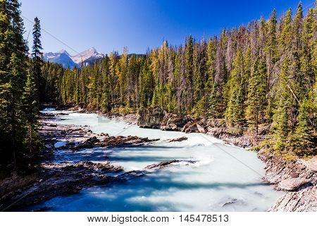 Kicking Horse River, Yoho National Park, Alberta, Canada
