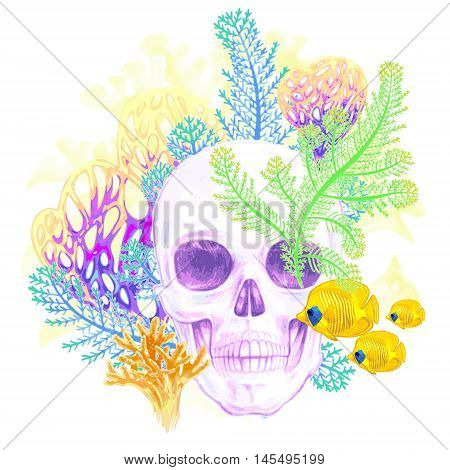 Illustration of the seabed. Exotic fish corals skull. Vector. Composition isolated on white background.
