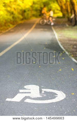 The Handicapped Road In The Public Park Witn Bicycle In Background