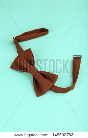 Brown Bow Tie On A Mint Background