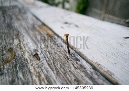 Old Nail And Wood. Hit the nail.