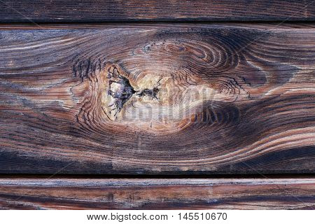 Detail of the knot in wood - rough wooden texture