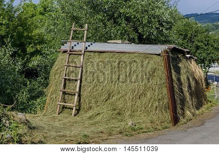 Covered haystack and wood step-ladder in Jeleznitsa village, near Sofia, Bulgaria
