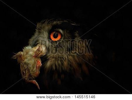 Detail of the head owl with prey - Owl with prey