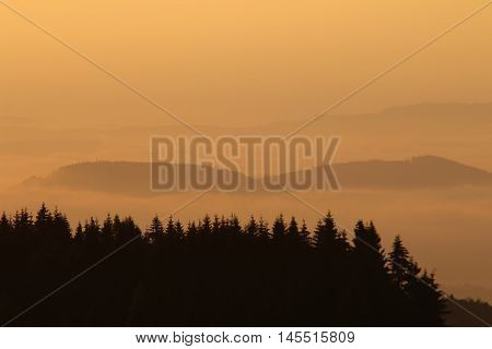 Image of the forested hills in early morning mist