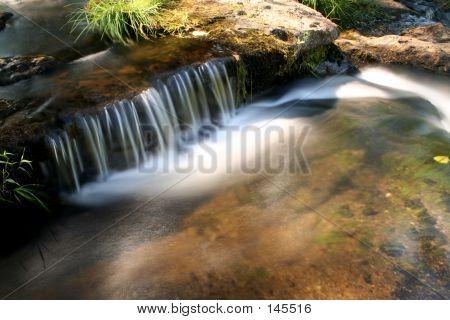 Creek In Sepia Color