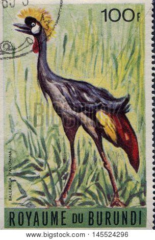 BURUNDI - CIRCA 1960s: A stamp printed in Burundi shows a Balearica Pavonina, circa 1960s