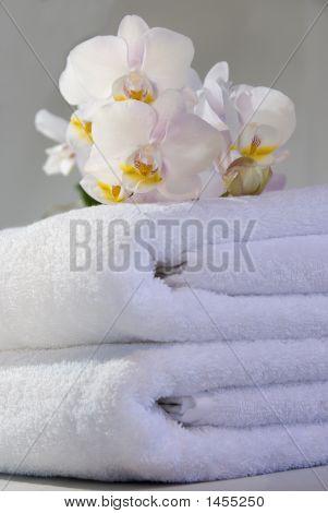 Spa Blossom