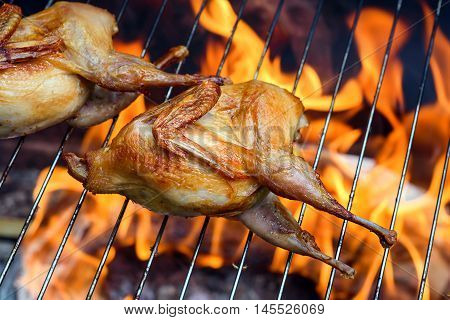 Grilling delicious poultry quails in a restaurant on grill. Roasted Partridge, quail prepared on the barbecue on sunny day. Culinary concept with delicious food.
