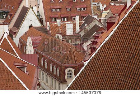 Old Tallin Rooftops
