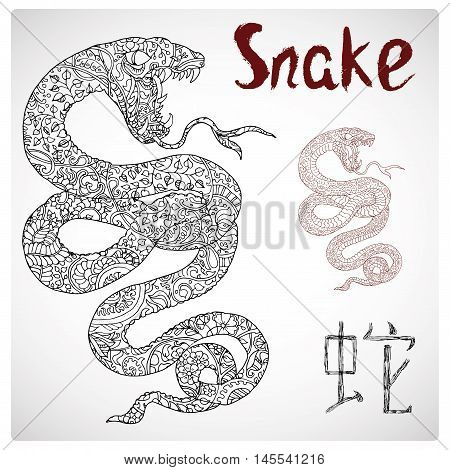 Hand drawn illustration of snake with zen floral pattern and lettering. Zodiac animal sign, horoscope and astrological vector symbol. Graphic drawing for coloring book. Chinese hieroglyph means Snake