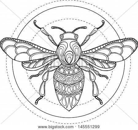Doodle Vector Hand Drawn Bee Illustration