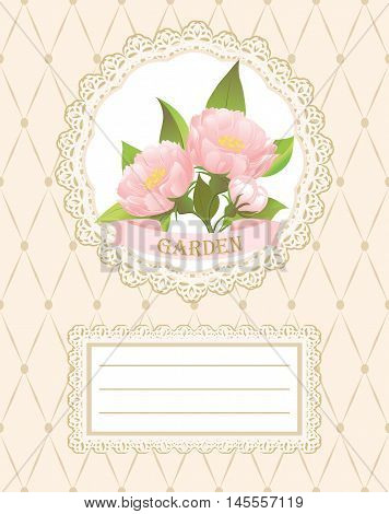 Background, card, invitation with pink peonies.  Pink peonies on a napkin with lace.