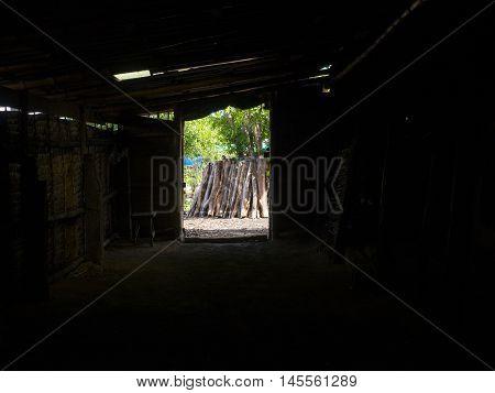 wood, logs, wood curved, fire wood, wood grain texture, wood pile, wood cut