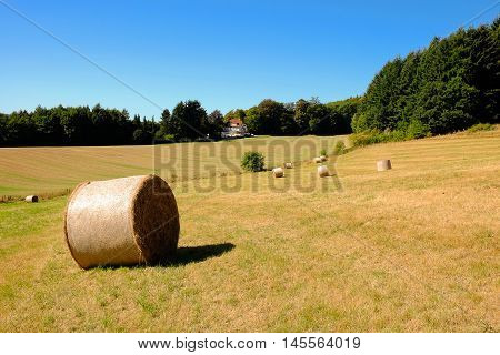 Coils of hay in the field after the grain harvest in Germany with a lonely house and forest on the background.