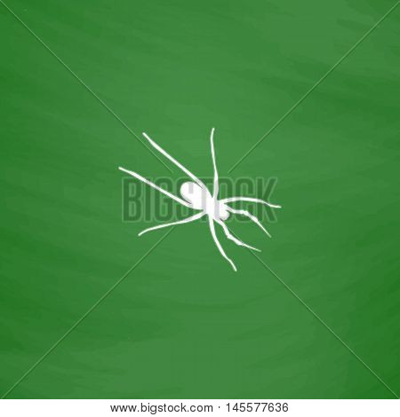 Spider Simple vector button. Imitation draw icon with white chalk on blackboard. Flat Pictogram and School board background. Illustration symbol