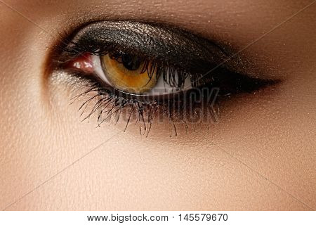 Eye Makeup. Beautiful Eyes Retro Style Make-up. Holiday Makeup D