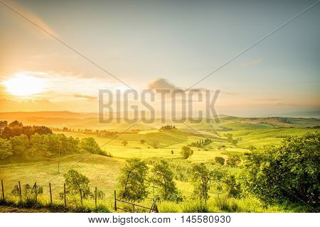Beautiful tuscan landscape view in Val dOrcia region near Pienza town on the morning in Italy. Wide angle photo with copy space