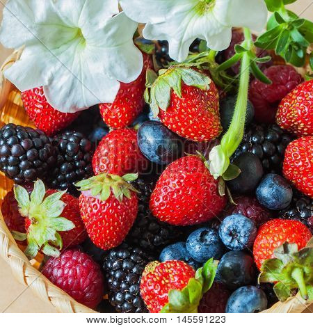 Wicker Bowl with a garden of colorful harvest of berries, decorated with flower petunia, blueberries, strawberries, raspberries and blackberries. Healthy, detox superfood concept.