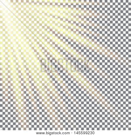 Cellular field bathed in sunlight. Sunlight design. May 3 International Day of the Sun. Vector illustration