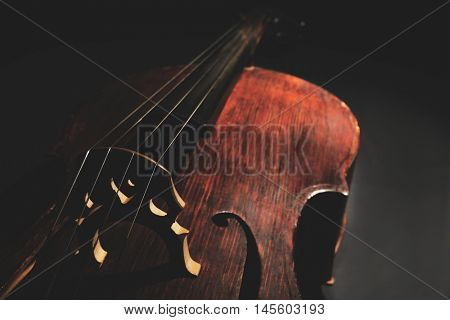 Part of musical string instrument, closeup