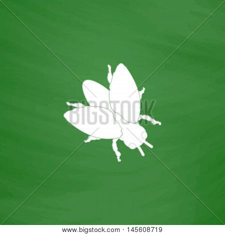 insect Simple vector button. Imitation draw icon with white chalk on blackboard. Flat Pictogram