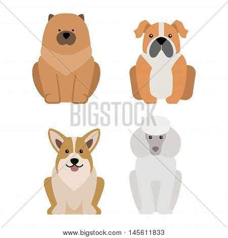 Vector illustration of different dogs breed isolated on white background. Flat dogs breed vector icon illustration, flat dogs breed isolated vector. Dog breed flat silhouette