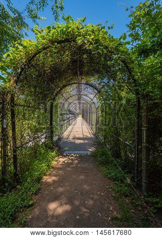Appalachian Trail Cage Tunnel Over Bridge