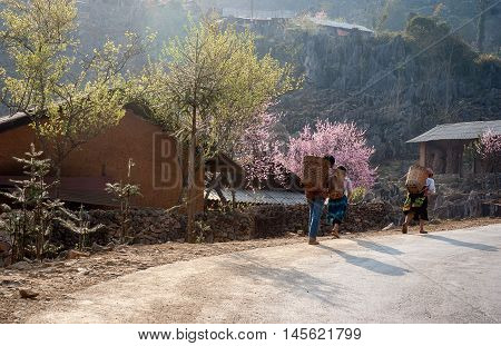 HA GIANG, VIET NAM, March 19, 2016 FG, Hmong, on the way home, in the spring
