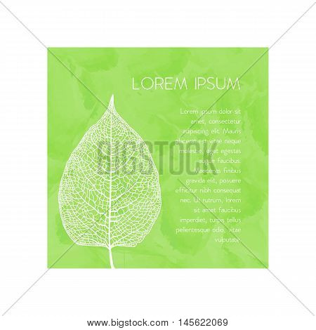 Vector skeletonized leaf. The graphic element may be used as a design background, business cards, postcards, etc.
