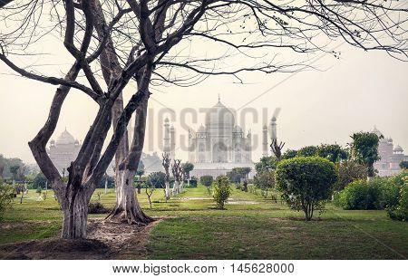 Taj Mahal And Trees In Mehtab Bagh Garden