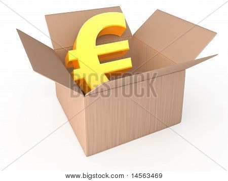Euro in opened box