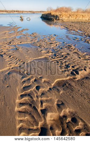 Drawing In The Sand On The Tide