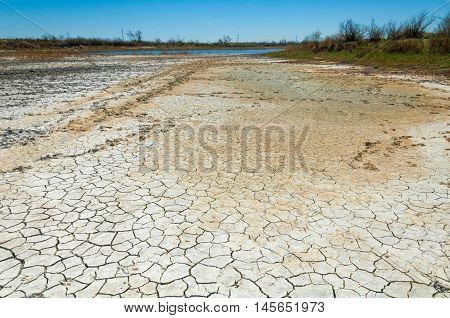 Cracked Earth. Saline, Salt-marsh. Texture