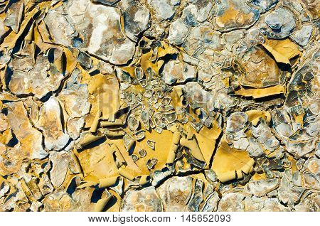 Cracked Earth. Saline, Salt-marsh. Texture