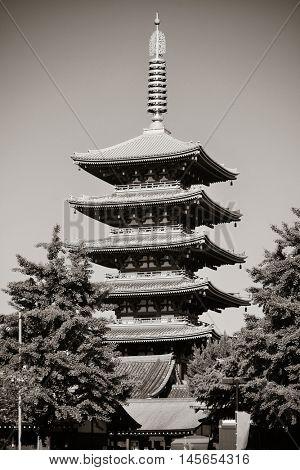 Sensoji Temple in Tokyo Japan.