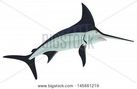 Sword Fish sea animal. Isolated on white vector illustration