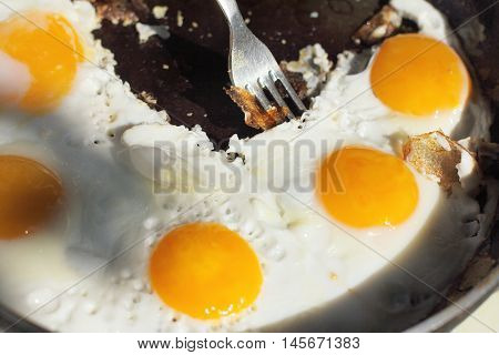 appetizing dish hot frying pan with fried eggs in the sun outdoors / hot dish of eggs