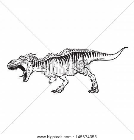 Detailed sketch style drawing of the roaring tirannosaurus rex. Full-lenght figure. Threatening pose. Isolated on white background. EPS10 vector illustration.