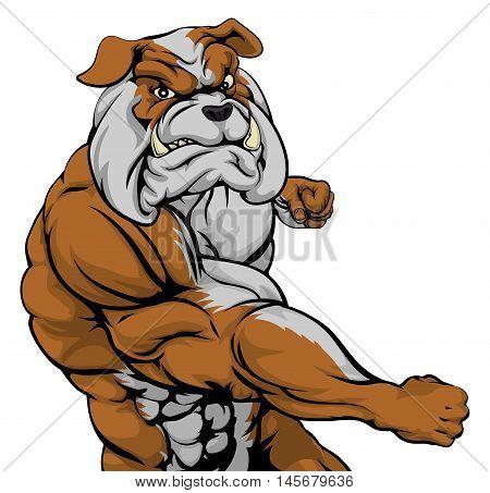 Mean Bulldog Mascot Fighting