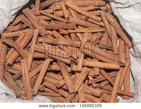 Dryed cinnamon crust, in the indain shop.