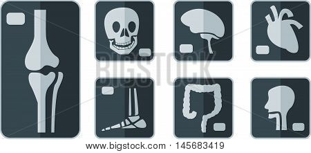 Abstract graphic set of X-rays flat icon