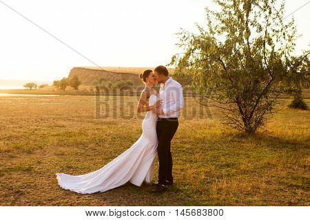 Wedding couple kissing near the tree in the sunset light