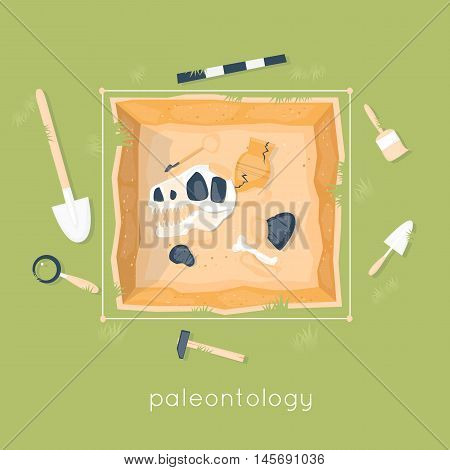 Paleontology, the archaeological site of dinosaur remains. Ancient fossils. Dinosaur age. Education and science. Skeleton fossil. Flat design vector illustration.