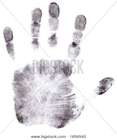 Full Hand Black Fingerprint